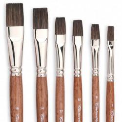 Pensule Pictura Par Ponei Tintoretto 195