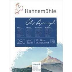 Bloc ulei/acril 230g/mp Hahnemuhle