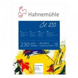 Bloc ulei 230g/mp Hahnemuhle