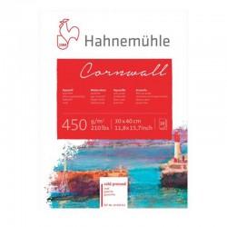 Bloc acuarela 10F 450 g/mp Cornwall Hahnemuhle